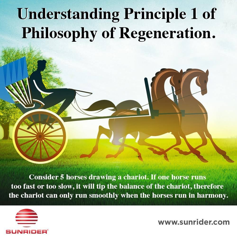 Philosophy of Regeneration - the feeding of the five key elements of the body. Digestive System, Immune System, Endocrine System, Respiratory System, Blood system